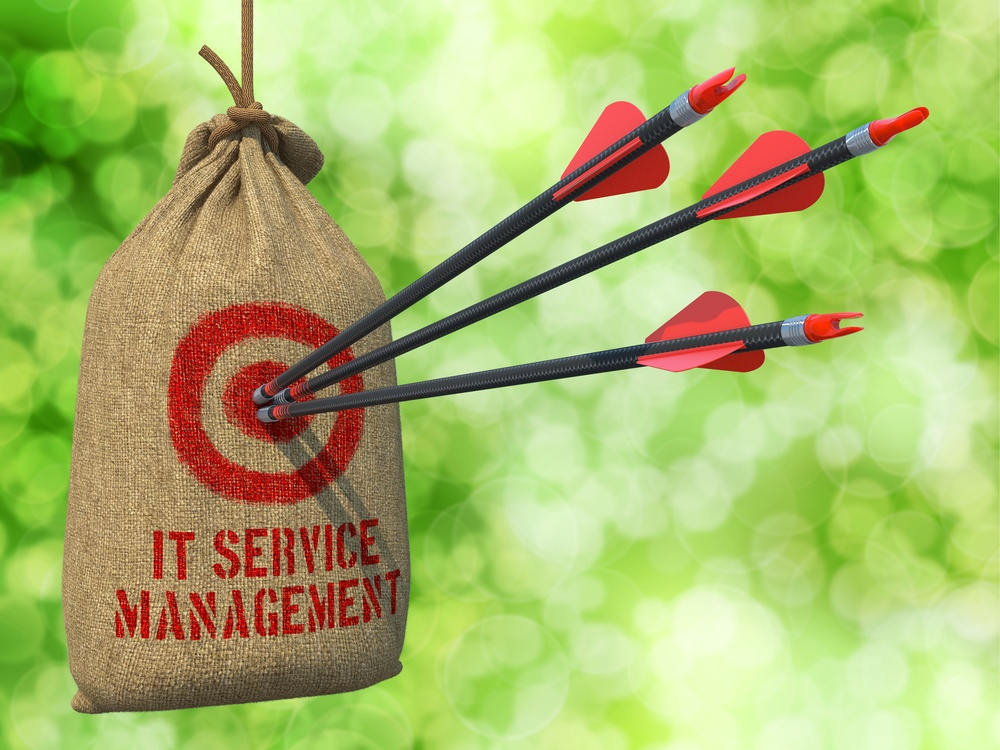 IT Service Management- Three Arrows Hit in Red Target on a Hanging Sack on Natural Bokeh Background
